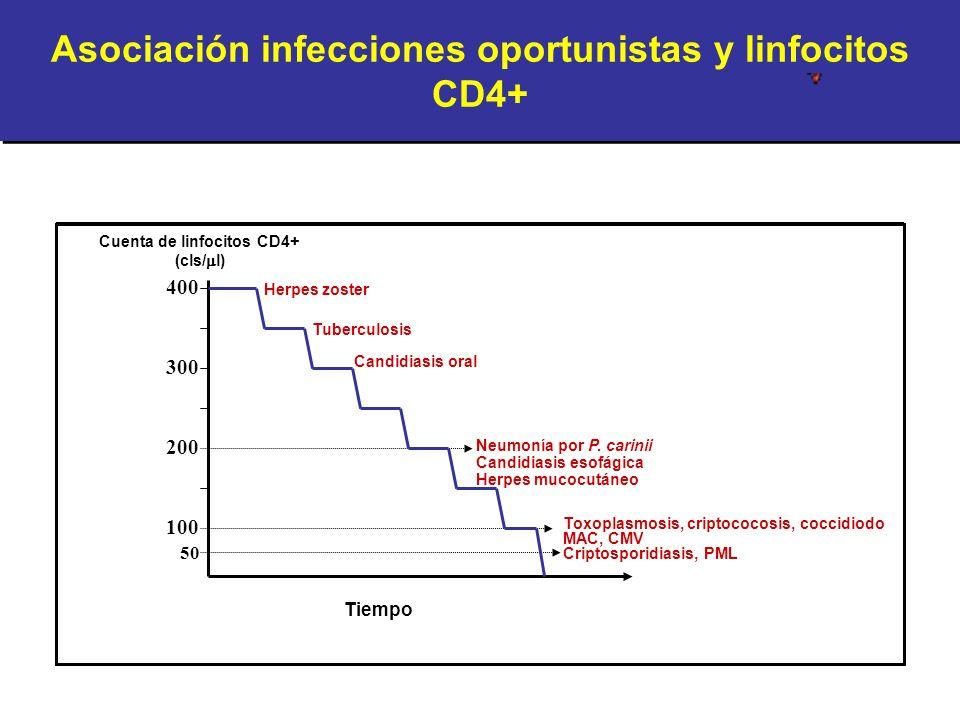Asociación infecciones oportunistas y linfocitos CD4+ 50 100 200 300 400 Tiempo Cuenta de linfocitos CD4+ (cls/ l) Herpes zoster Tuberculosis Candidia