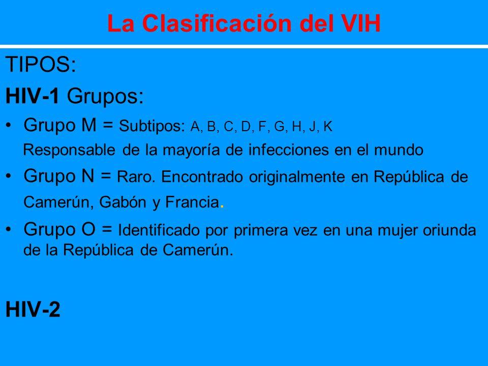 La Clasificación del VIH TIPOS: HIV-1 Grupos: Grupo M = Subtipos: A, B, C, D, F, G, H, J, K Responsable de la mayoría de infecciones en el mundo Grupo