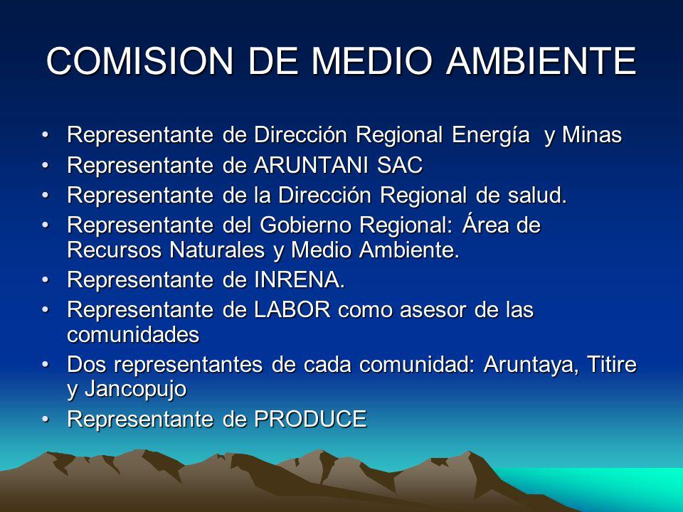 COMISION DE MEDIO AMBIENTE Representante de Dirección Regional Energía y MinasRepresentante de Dirección Regional Energía y Minas Representante de ARU