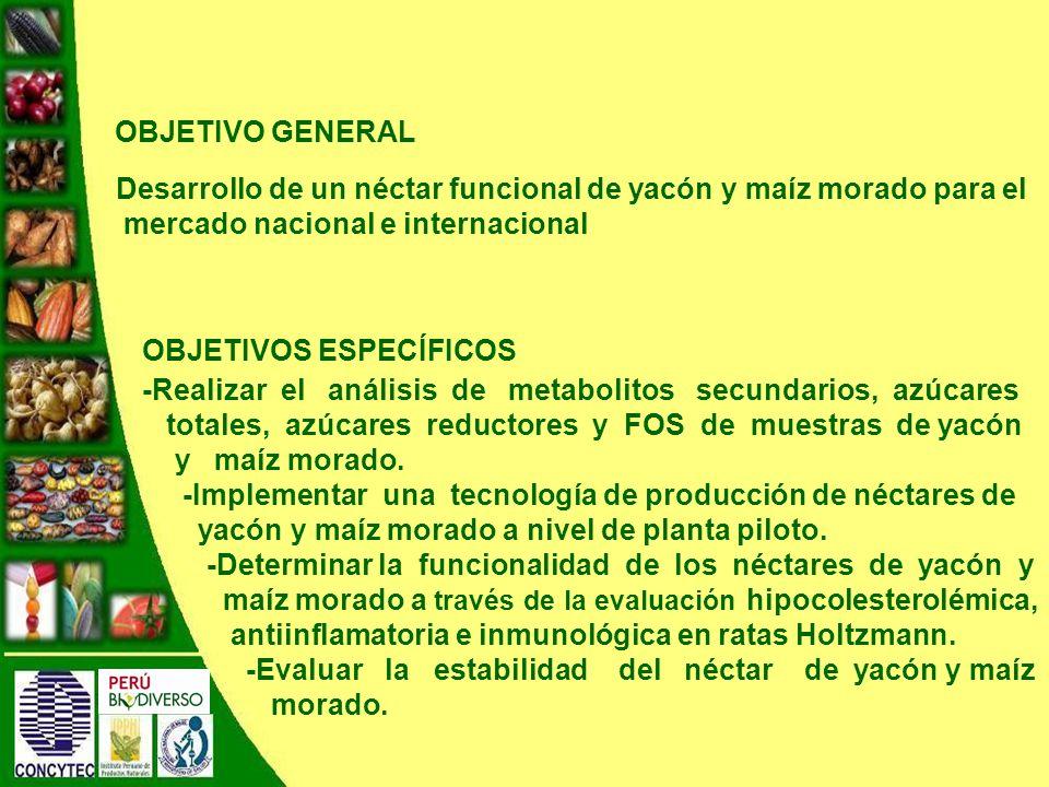 Desarrollo de un néctar funcional de yacón y maíz morado para el mercado nacional e internacional OBJETIVO GENERAL OBJETIVOS ESPECÍFICOS -Realizar el análisis de metabolitos secundarios, azúcares totales, azúcares reductores y FOS de muestras de yacón y maíz morado.