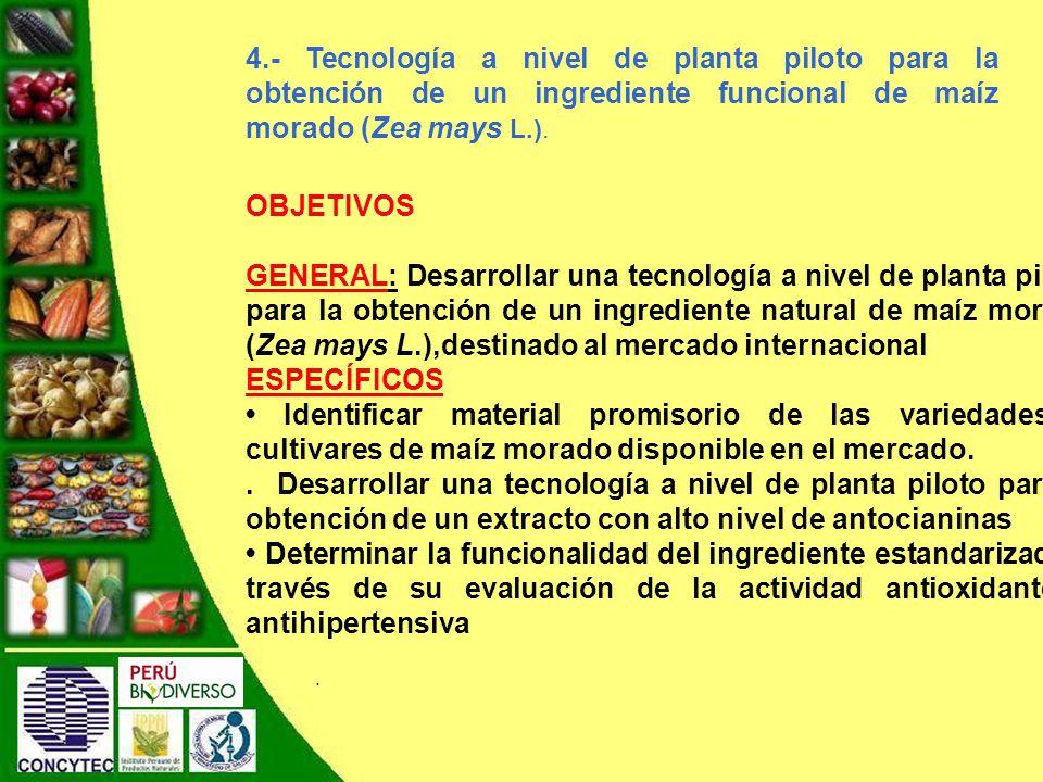 4.- Tecnología a nivel de planta piloto para la obtención de un ingrediente funcional de maíz morado (Zea mays L.).