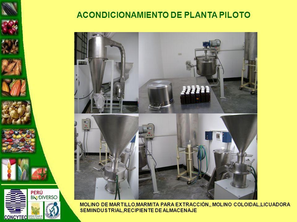 ACONDICIONAMIENTO DE PLANTA PILOTO MOLINO DE MARTILLO,MARMITA PARA EXTRACCIÓN,, MOLINO COLOIDAL,LICUADORA SEMIINDUSTRIAL,RECIPIENTE DE ALMACENAJE