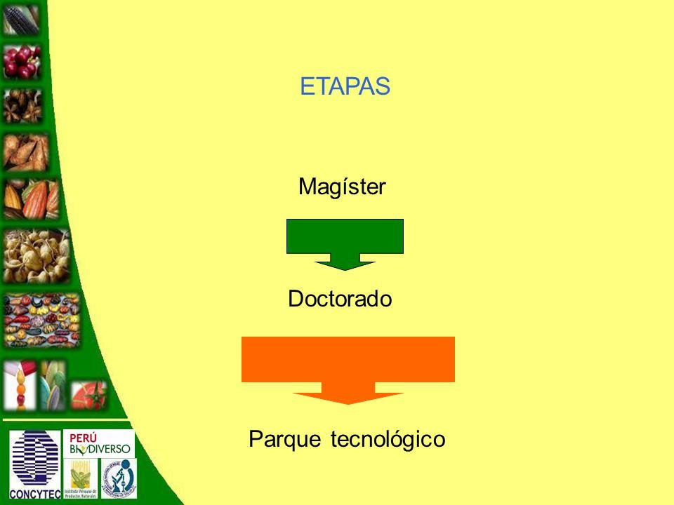 Magíster Doctorado Parque tecnológico ETAPAS