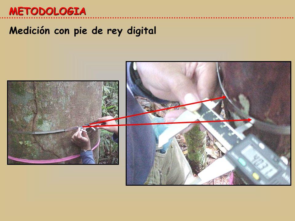 Medición con pie de rey digital METODOLOGIA
