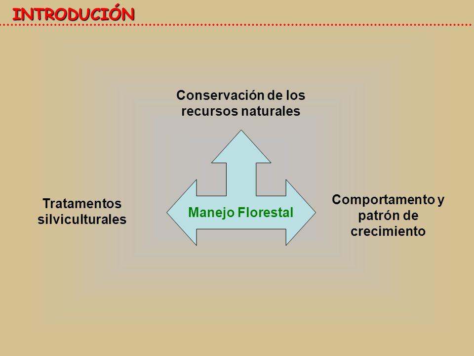 INTRODUCCIÓN Dinámica forestal Tasa de crecimiento Reclutamiento Mortandad