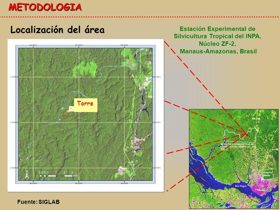 METODOLOGIA Localización del área Torre Estación Experimental de Silvicultura Tropical del INPA, Núcleo ZF-2, Manaus-Amazonas, Brasil Fuente: SIGLAB