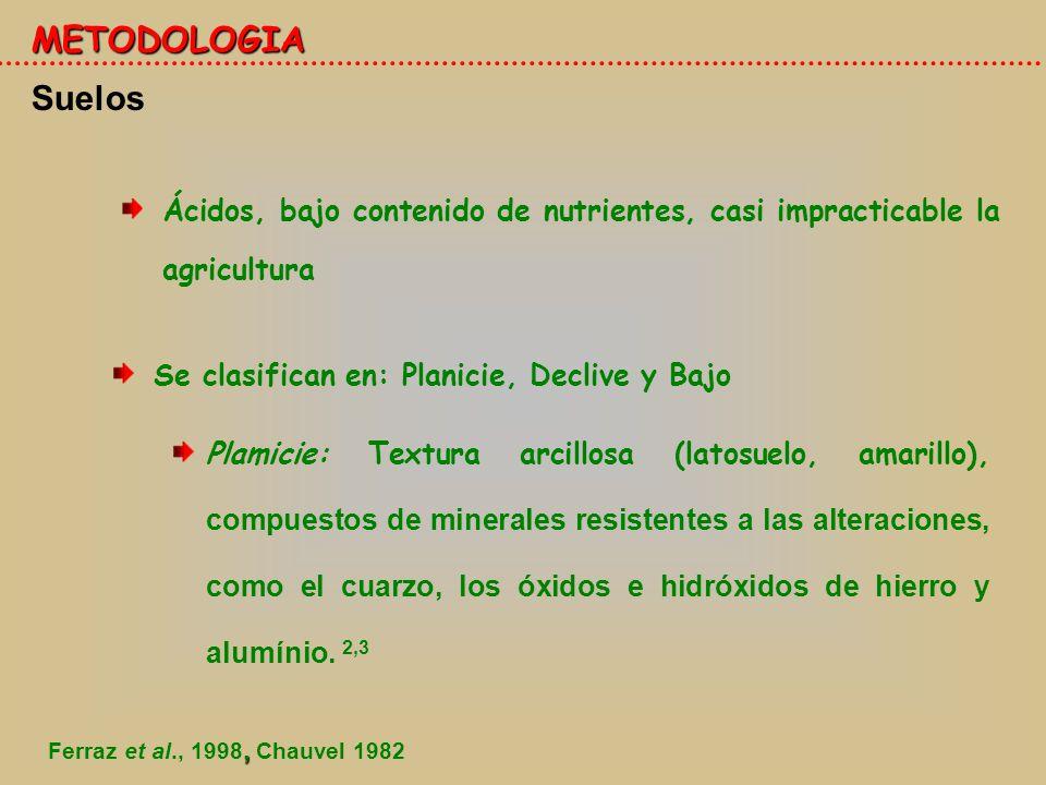 Clima 4.- METODOLOGIA Segun la clasificación de Koppen: Húmedo y lluvioso.