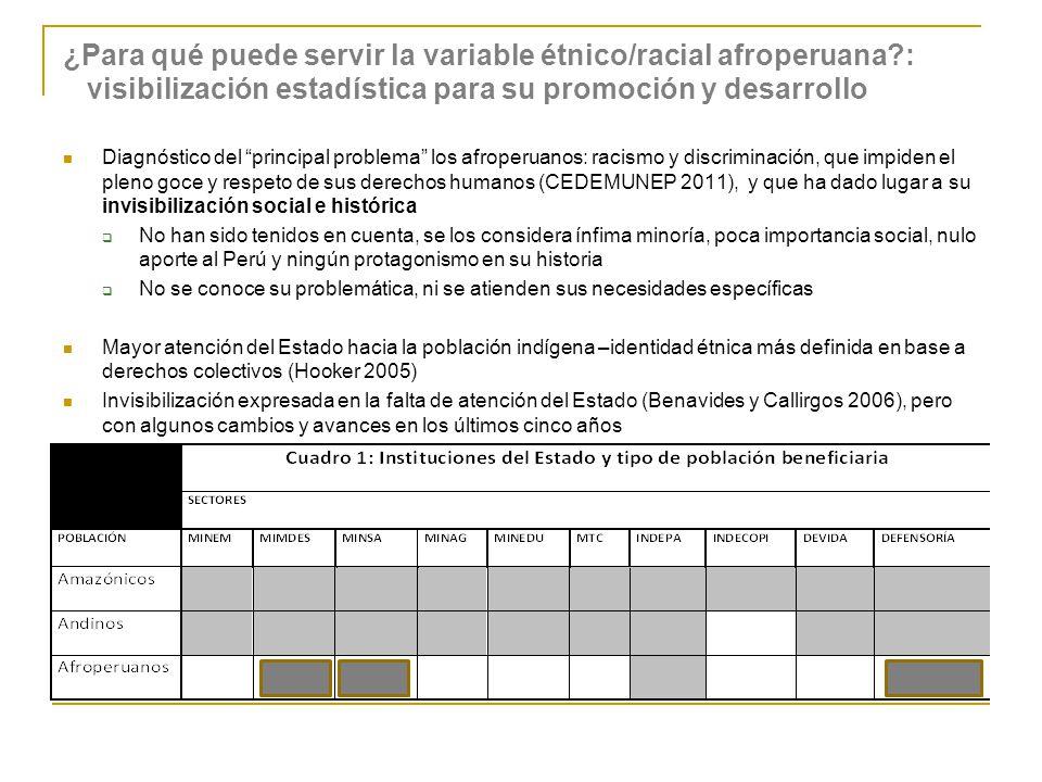 ¿Para qué puede servir la variable étnico/racial afroperuana?: visibilización estadística para su promoción y desarrollo Diagnóstico del principal pro