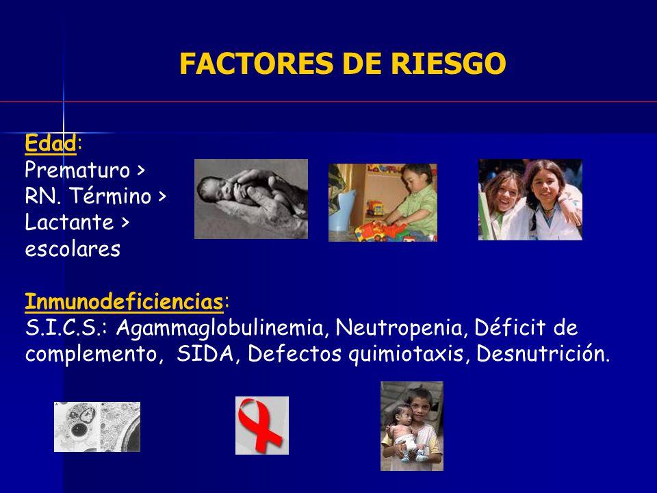 FACTORES DE RIESGO Edad: Prematuro > RN. Término > Lactante > escolares Inmunodeficiencias: S.I.C.S.: Agammaglobulinemia, Neutropenia, Déficit de comp