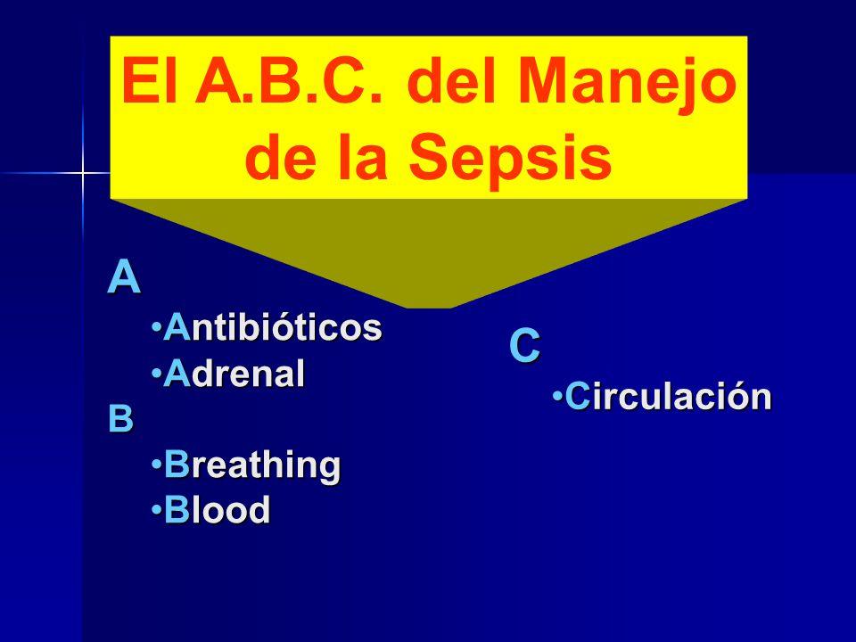 El A.B.C. del Manejo de la Sepsis A AntibióticosAntibióticos AdrenalAdrenalB BreathingBreathing BloodBlood C CirculaciónCirculación
