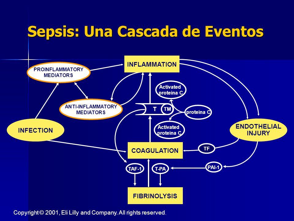 VARIABLES DE PERFUSIÓN TISULAR Hiperlactemia ( >1 mmol/L) Hiperlactemia ( >1 mmol/L) LLenado capilar lento LLenado capilar lento Crit Care Med 2003; 31 (4):1250-56