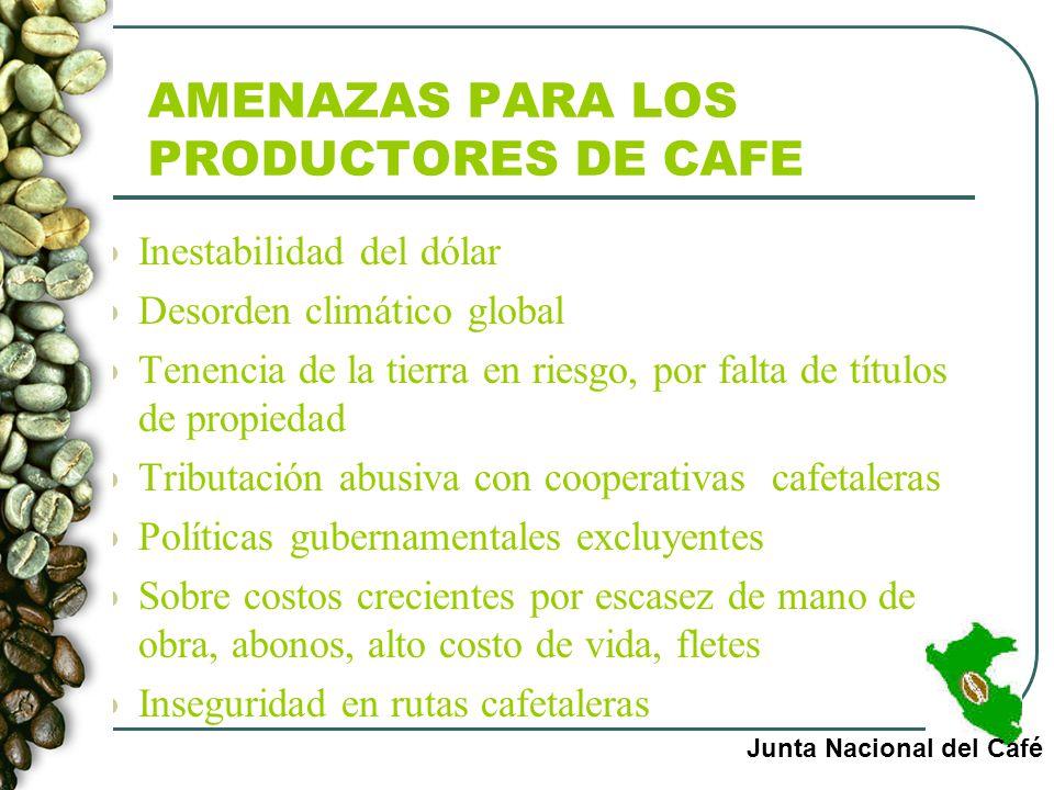 AMENAZAS PARA LOS PRODUCTORES DE CAFE Inestabilidad del dólar Desorden climático global Tenencia de la tierra en riesgo, por falta de títulos de propi