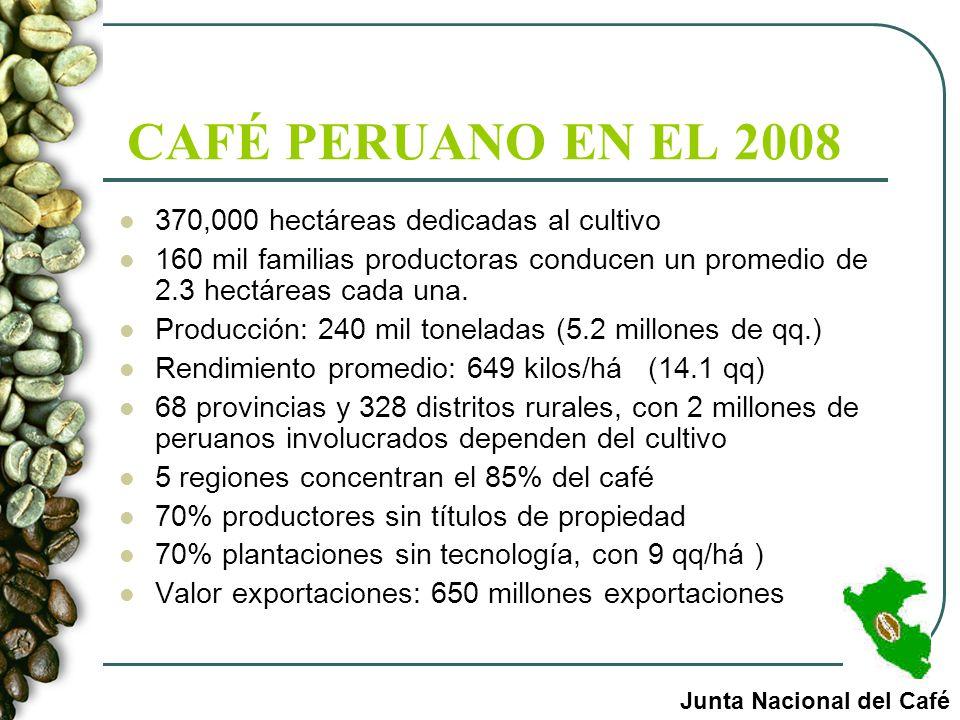 CAFÉ PERUANO EN EL 2008 370,000 hectáreas dedicadas al cultivo 160 mil familias productoras conducen un promedio de 2.3 hectáreas cada una. Producción