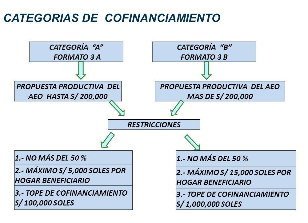 CATEGORIAS DE COFINANCIAMIENTO RESTRICCIONES 1.- NO MÁS DEL 50 % 2.- MÁXIMO S/ 5,000 SOLES POR HOGAR BENEFICIARIO 3.- TOPE DE COFINANCIAMIENTO S/ 100,000 SOLES 1.- NO MÁS DEL 50 % 2.- MÁXIMO S/ 15,000 SOLES POR HOGAR BENEFICIARIO 3.- TOPE DE COFINANCIAMIENTO S/ 1,000,000 SOLES CATEGORÍA A FORMATO 3 A CATEGORÍA B FORMATO 3 B PROPUESTA PRODUCTIVA DEL AEO HASTA S/ 200,000 PROPUESTA PRODUCTIVA DEL AEO MAS DE S/ 200,000