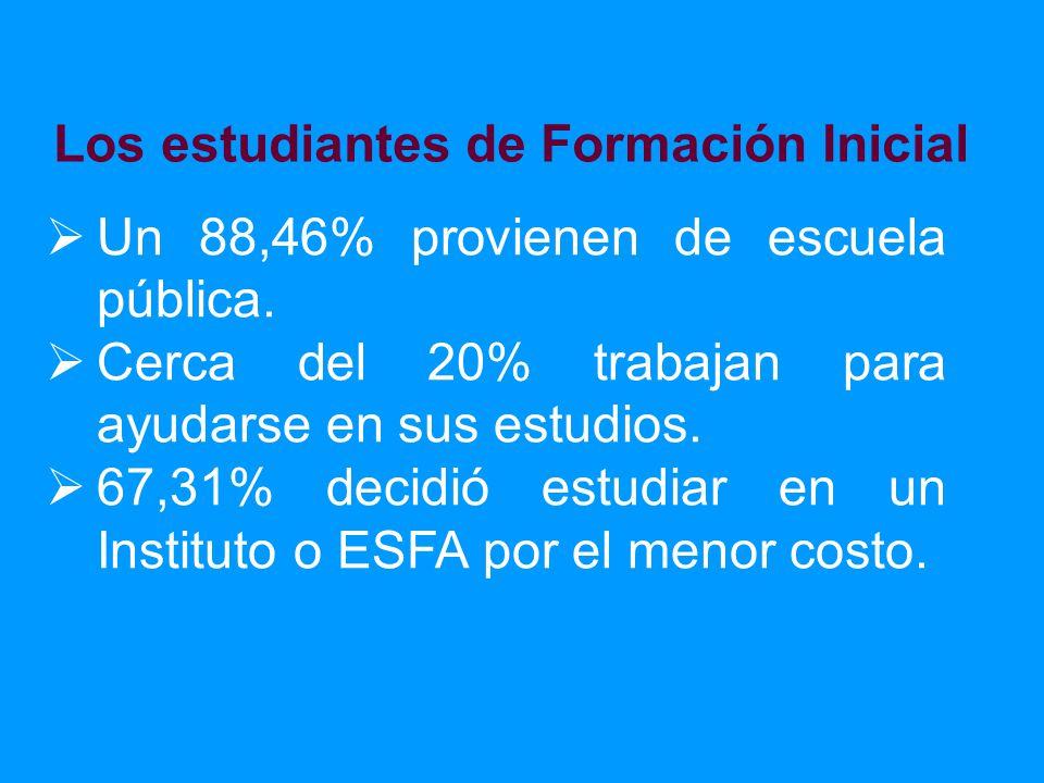 Un 88,46% provienen de escuela pública. Cerca del 20% trabajan para ayudarse en sus estudios.