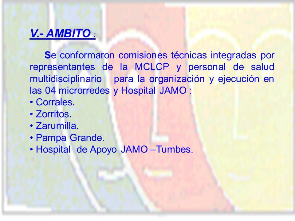 V.- AMBITO : Se conformaron comisiones técnicas integradas por representantes de la MCLCP y personal de salud multidisciplinario para la organización