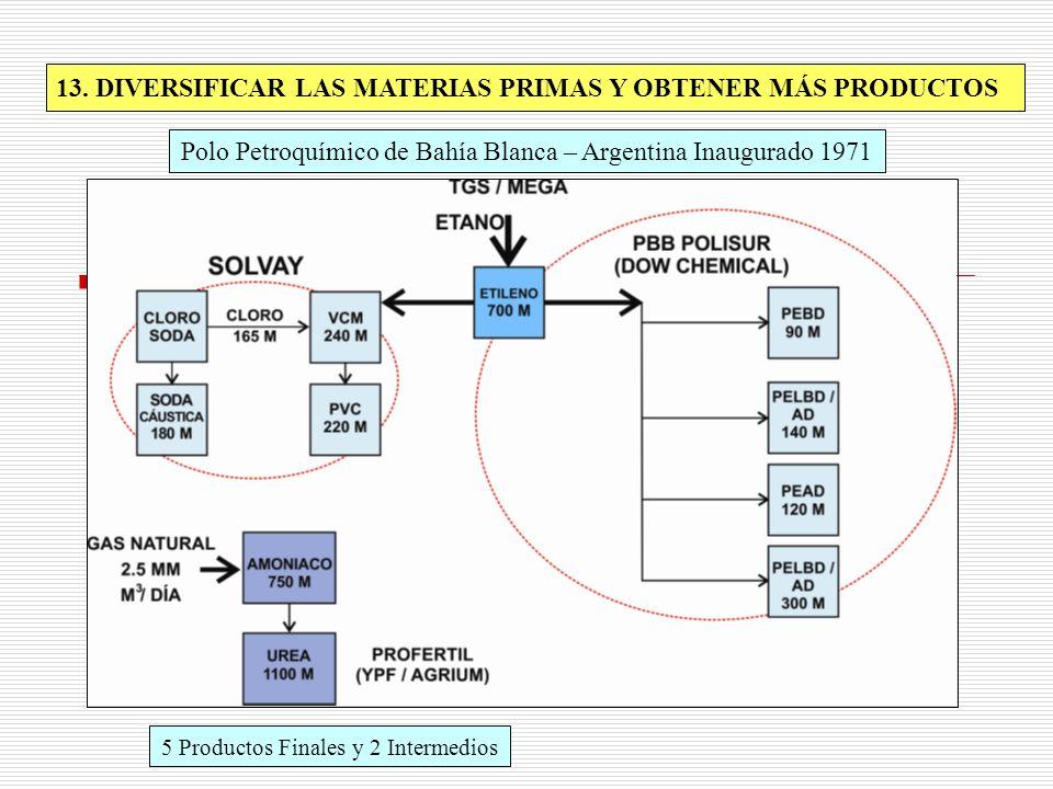 13. DIVERSIFICAR LAS MATERIAS PRIMAS Y OBTENER MÁS PRODUCTOS Polo Petroquímico de Bahía Blanca – Argentina Inaugurado 1971 5 Productos Finales y 2 Int