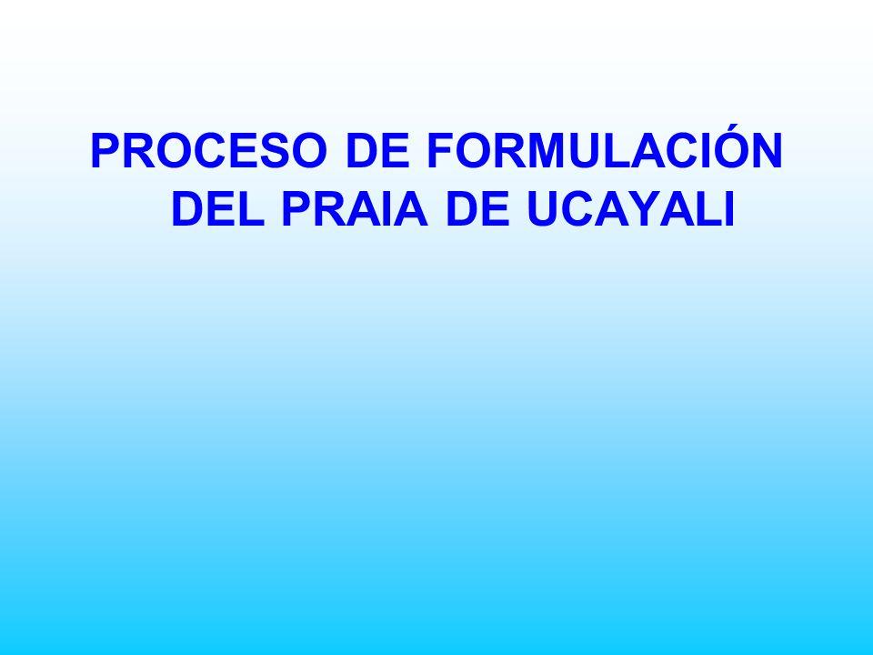 PROCESO DE FORMULACIÓN DEL PRAIA DE UCAYALI