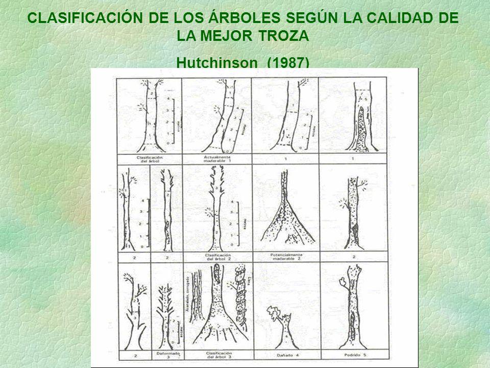 CLASIFICACIÓN DE LOS ÁRBOLES SEGÚN LA CALIDAD DE LA MEJOR TROZA Hutchinson (1987)