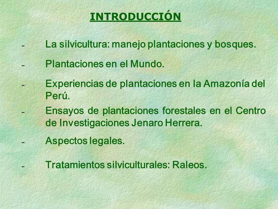INTRODUCCIÓN - La silvicultura: manejo plantaciones y bosques. - Plantaciones en el Mundo. - Experiencias de plantaciones en la Amazonía del Perú. - E