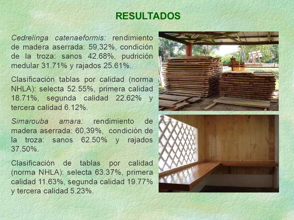 RESULTADOS Cedrelinga catenaeformis: rendimiento de madera aserrada: 59,32%, condición de la troza: sanos 42.68%, pudrición medular 31.71% y rajados 2