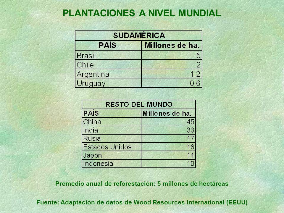 PLANTACIONES A NIVEL MUNDIAL Promedio anual de reforestación: 5 millones de hectáreas Fuente: Adaptación de datos de Wood Resources International (EEU