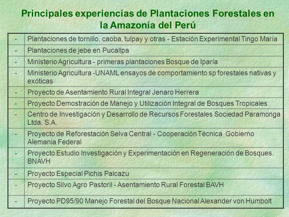 Principales experiencias de Plantaciones Forestales en la Amazonía del Perú -Plantaciones de tornillo, caoba, tulpay y otras - Estación Experimental T