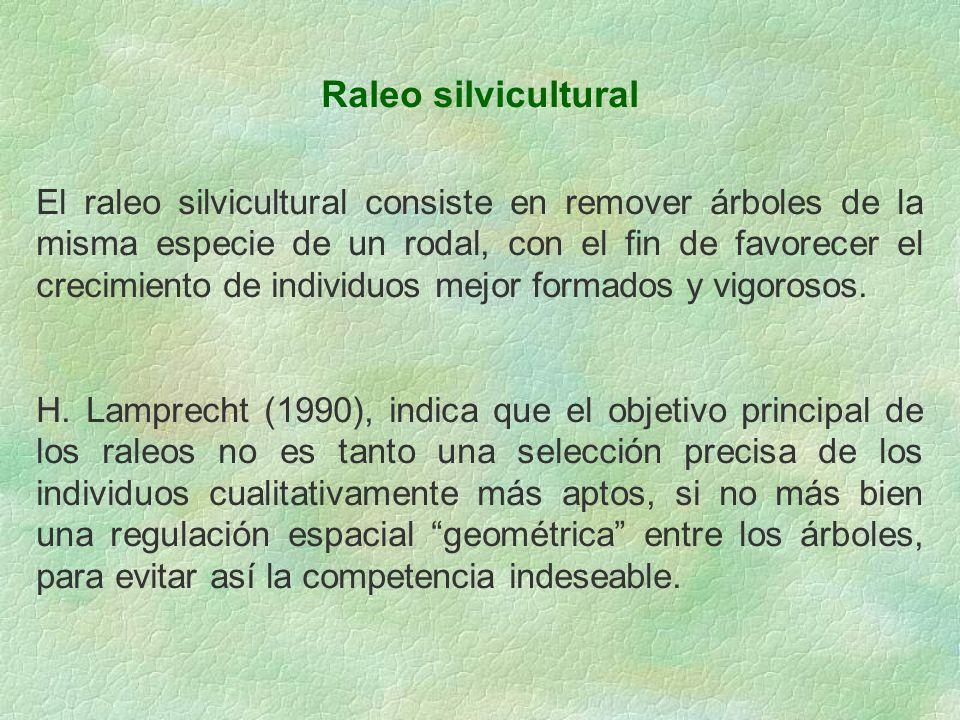 Raleo silvicultural El raleo silvicultural consiste en remover árboles de la misma especie de un rodal, con el fin de favorecer el crecimiento de indi
