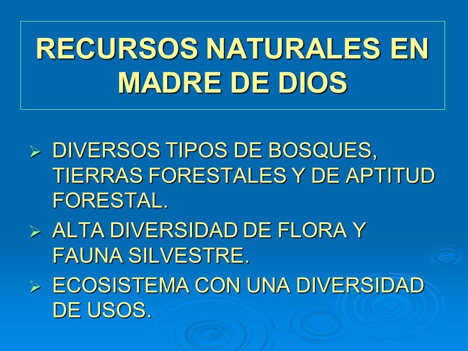 RECURSOS NATURALES EN MADRE DE DIOS DIVERSOS TIPOS DE BOSQUES, TIERRAS FORESTALES Y DE APTITUD FORESTAL. DIVERSOS TIPOS DE BOSQUES, TIERRAS FORESTALES