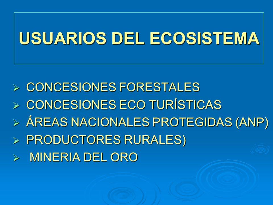 CONCESIONES FORESTALES CONCESIONES FORESTALES CONCESIONES ECO TURÍSTICAS CONCESIONES ECO TURÍSTICAS ÁREAS NACIONALES PROTEGIDAS (ANP) ÁREAS NACIONALES