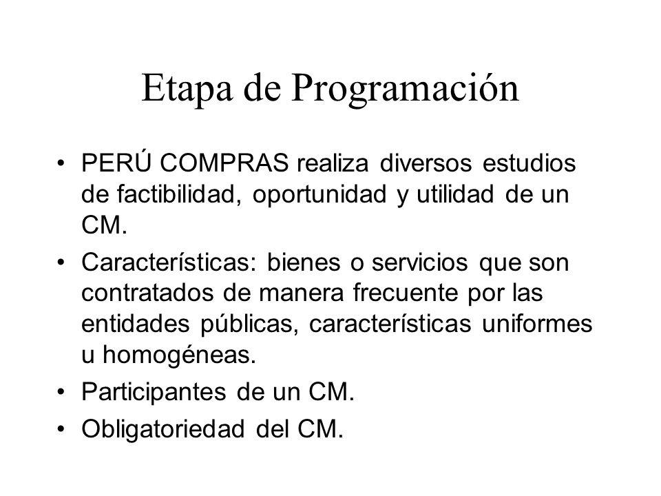 Etapa de Programación PERÚ COMPRAS realiza diversos estudios de factibilidad, oportunidad y utilidad de un CM.