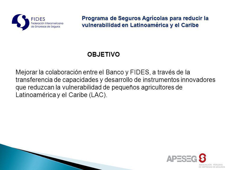 OBJETIVO Mejorar la colaboración entre el Banco y FIDES, a través de la transferencia de capacidades y desarrollo de instrumentos innovadores que redu