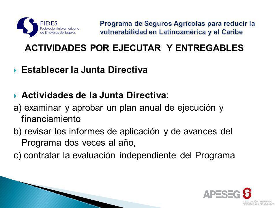 Establecer la Junta Directiva Actividades de la Junta Directiva: a) examinar y aprobar un plan anual de ejecución y financiamiento b) revisar los info