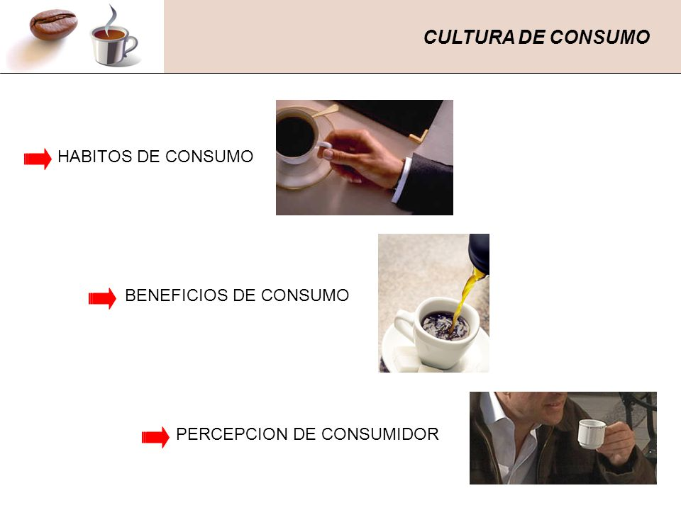 CULTURA DE CONSUMO HABITOS DE CONSUMO BENEFICIOS DE CONSUMO PERCEPCION DE CONSUMIDOR