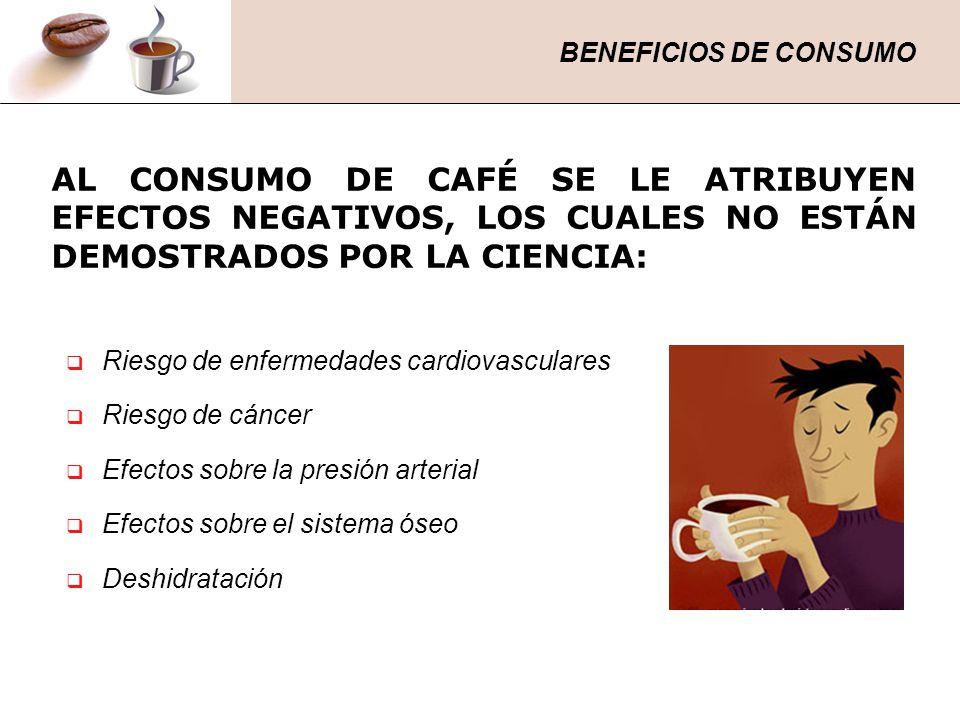 AL CONSUMO DE CAFÉ SE LE ATRIBUYEN EFECTOS NEGATIVOS, LOS CUALES NO ESTÁN DEMOSTRADOS POR LA CIENCIA: Riesgo de enfermedades cardiovasculares Riesgo d