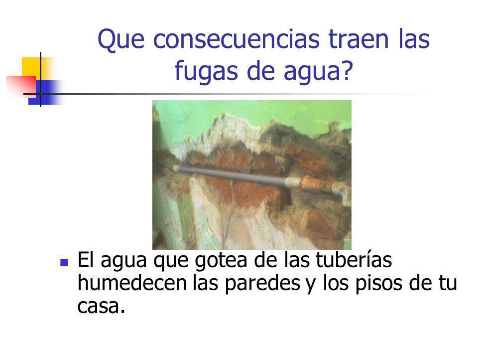 El agua que gotea de las tuberías humedecen las paredes y los pisos de tu casa. Que consecuencias traen las fugas de agua?