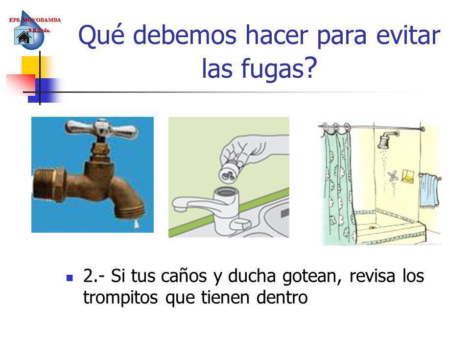 2.- Si tus caños y ducha gotean, revisa los trompitos que tienen dentro Qué debemos hacer para evitar las fugas ?