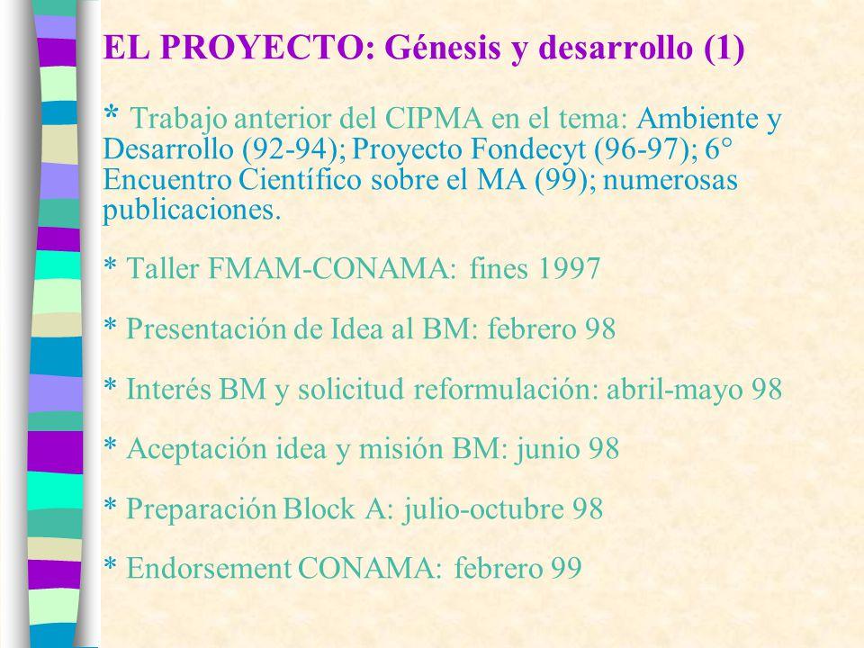 EL PROYECTO: Génesis y desarrollo (1) * Trabajo anterior del CIPMA en el tema: Ambiente y Desarrollo (92-94); Proyecto Fondecyt (96-97); 6° Encuentro Científico sobre el MA (99); numerosas publicaciones.