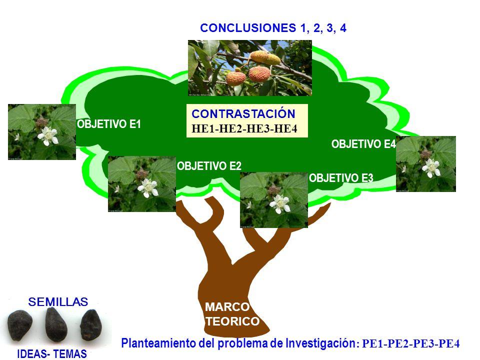 Los objetivos son los tipos de conocimientos que se pretenden alcanzar al resolver la pregunta de investigación. Briones (1998). ¿Semilla de qué plant