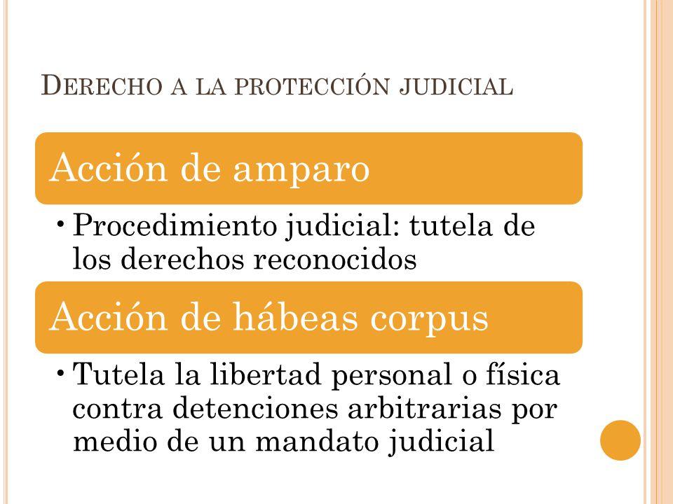 D ERECHO A LA PROTECCIÓN JUDICIAL Acción de amparo Procedimiento judicial: tutela de los derechos reconocidos Acción de hábeas corpus Tutela la libert