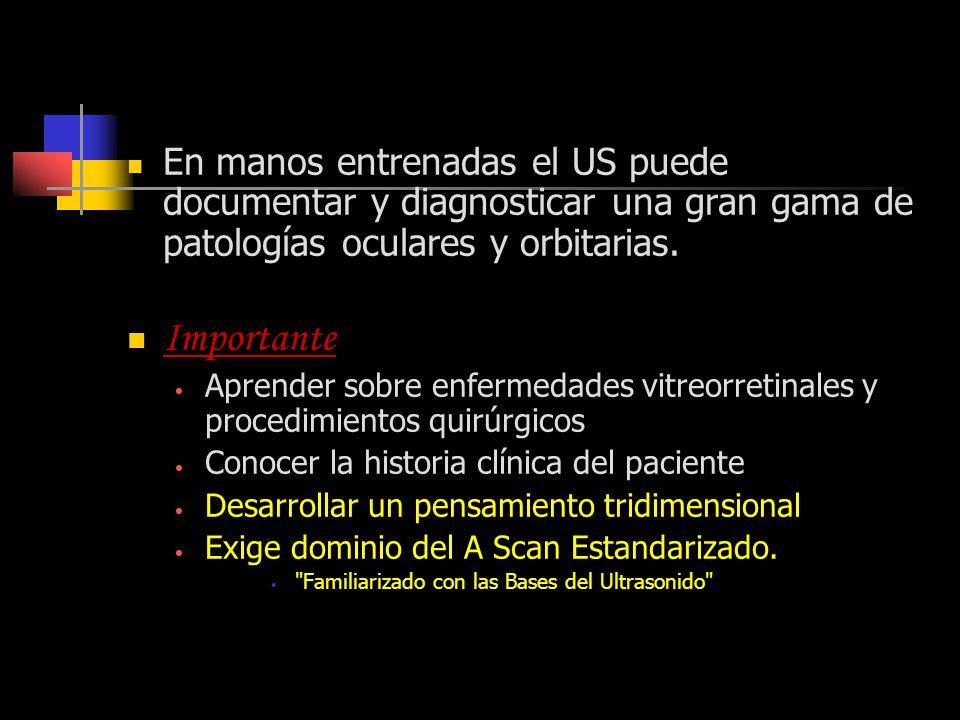 Técnica de Exámen con B-scan En manos entrenadas el US puede documentar y diagnosticar una gran gama de patologías oculares y orbitarias. Importante A