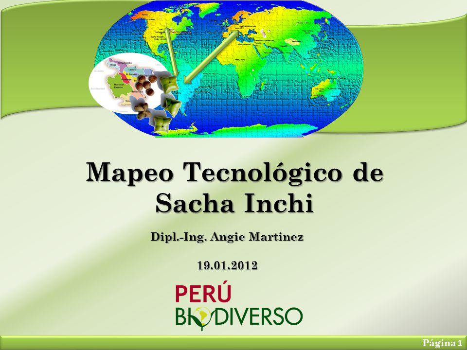 Mapeo Tecnológico de Sacha Inchi Página 1 Dipl.-Ing. Angie Martinez 19.01.2012