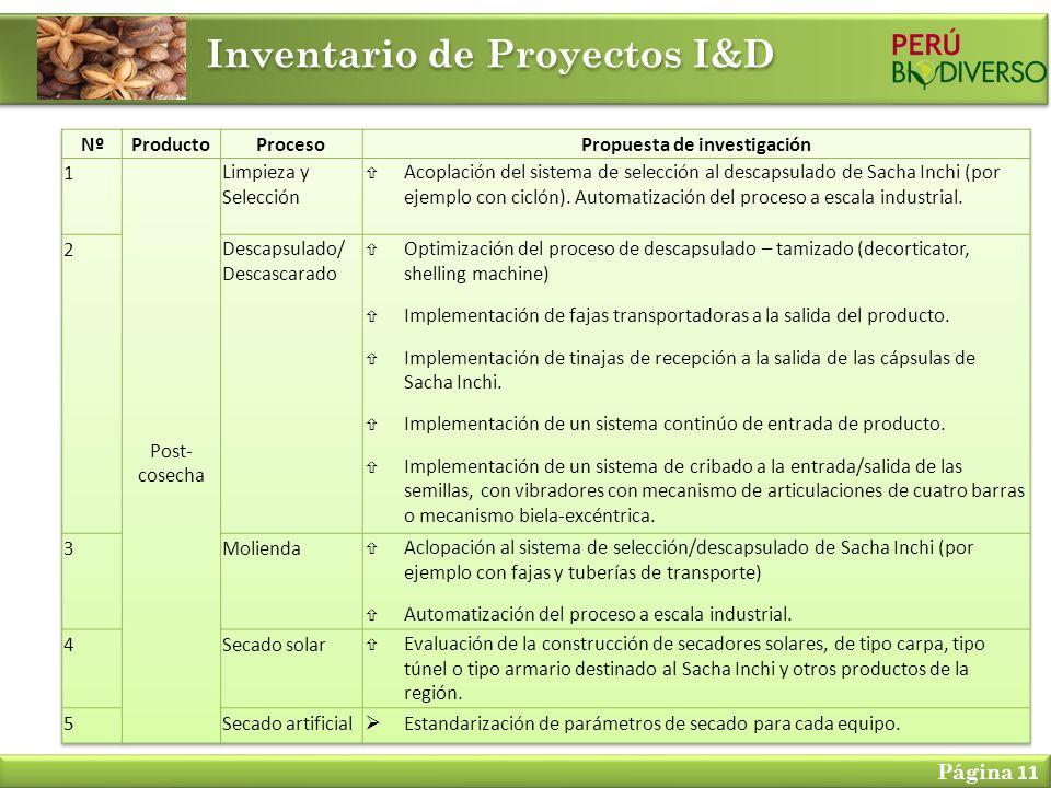 Inventario de Proyectos I&D Página 11