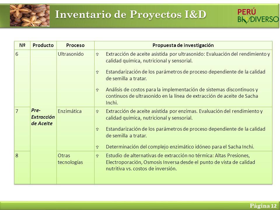Inventario de Proyectos I&D Página 12
