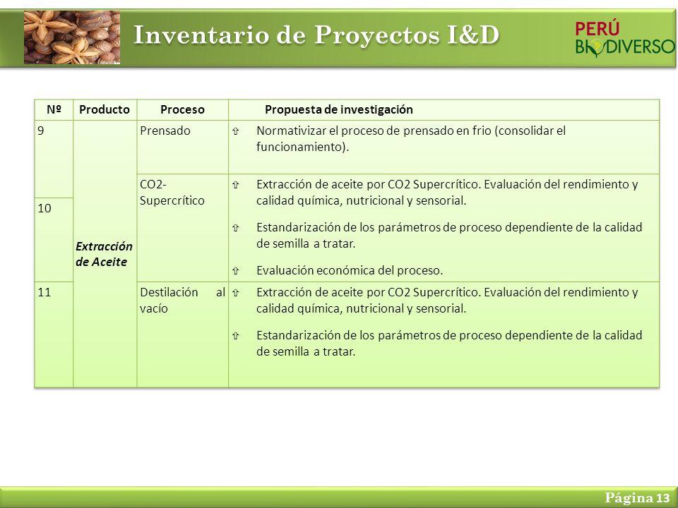 Inventario de Proyectos I&D Página 13