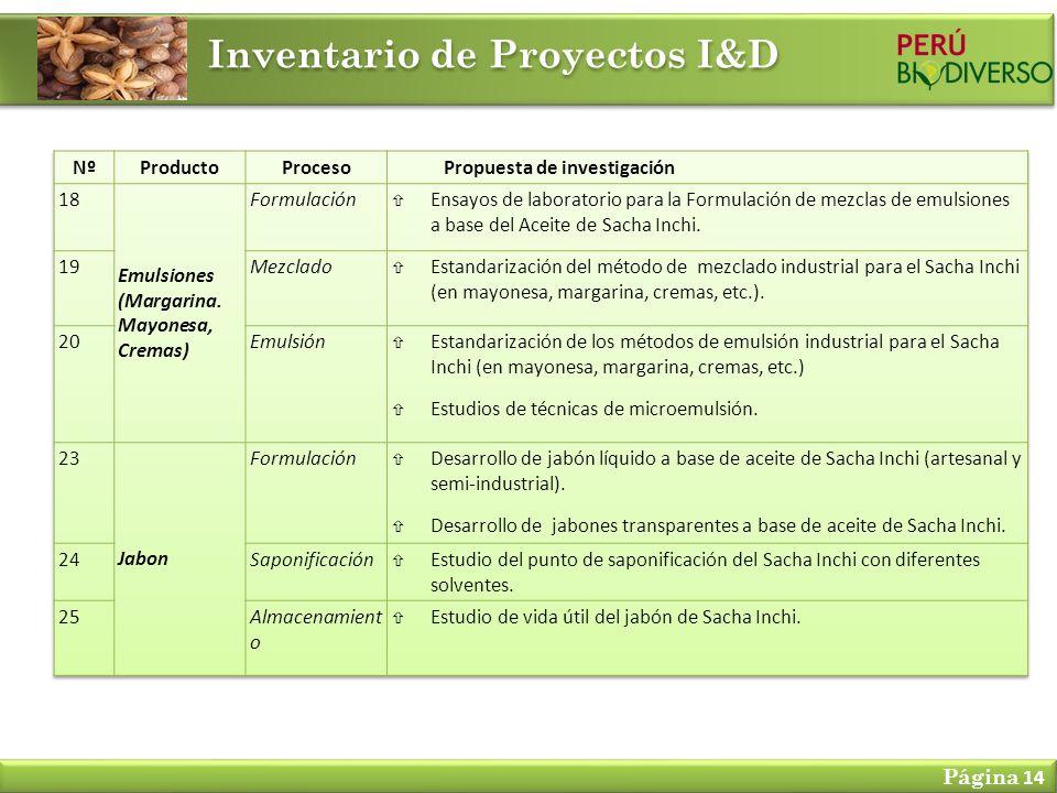 Inventario de Proyectos I&D Página 14