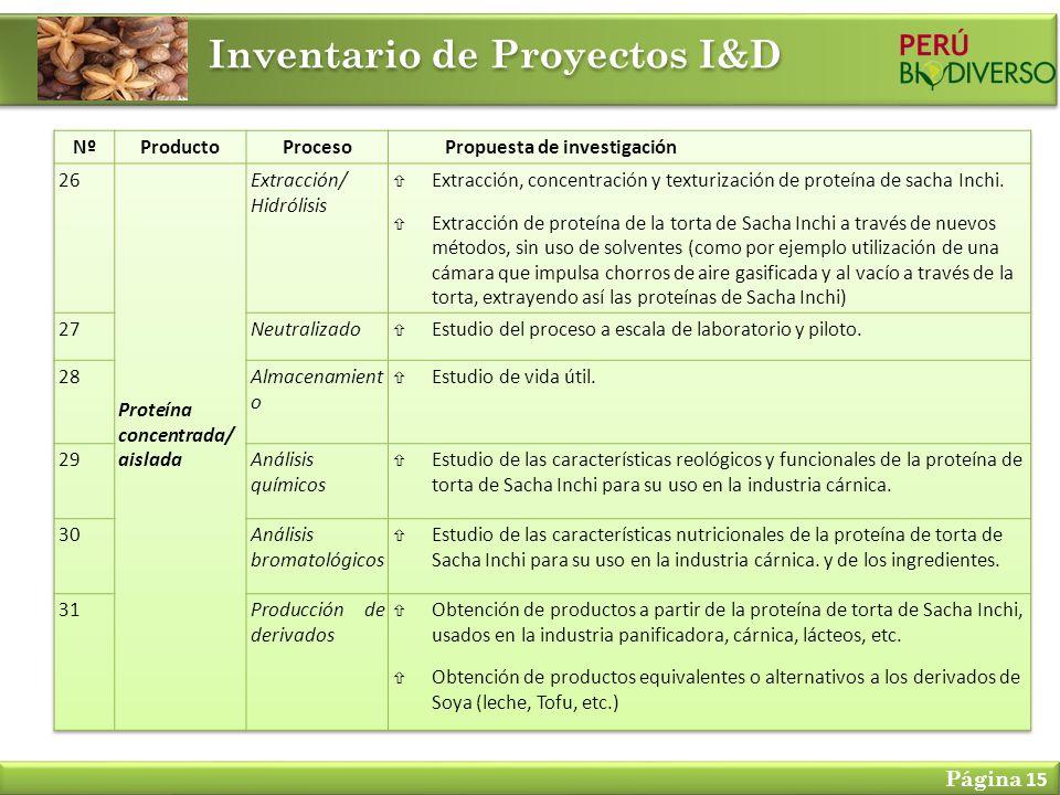 Inventario de Proyectos I&D Página 15