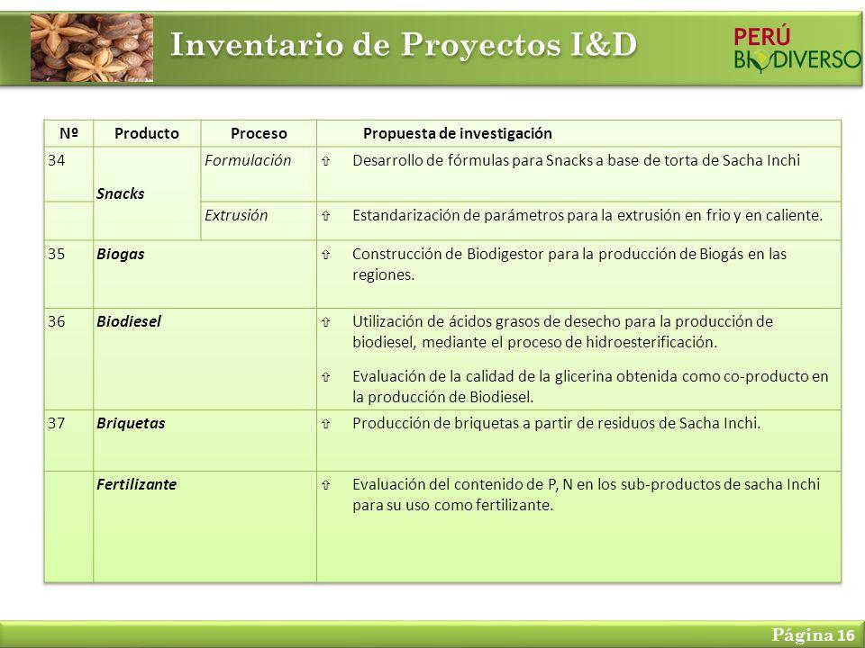 Inventario de Proyectos I&D Página 16