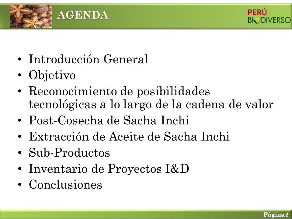 Introducción General Objetivo Reconocimiento de posibilidades tecnológicas a lo largo de la cadena de valor Post-Cosecha de Sacha Inchi Extracción de Aceite de Sacha Inchi Sub-Productos Inventario de Proyectos I&D Conclusiones AGENDA Página 2