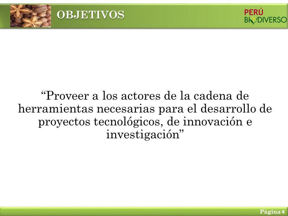 Proveer a los actores de la cadena de herramientas necesarias para el desarrollo de proyectos tecnológicos, de innovación e investigación OBJETIVOS Página 4